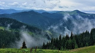 The beauty of the Carpathian Mountains | Air video in 4K. Карпаты с высоты птичьего полета.