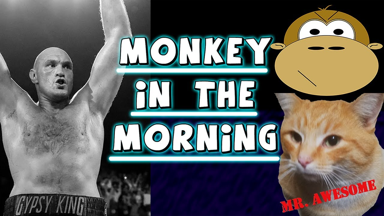 Download Monkey in the Morning: Tyson Fury v Deontay Wilder 3
