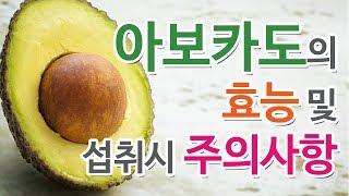 아보카도(avocado) 효능/섭취시 주의사항은?