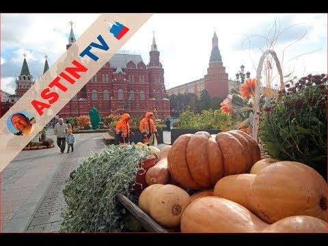Россия. Москва. Кремль. Красная Площадь. Золотая Осень.