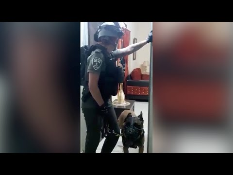 Abuse and Collective Punishment in al-'Esawiya, East Jerusalem
