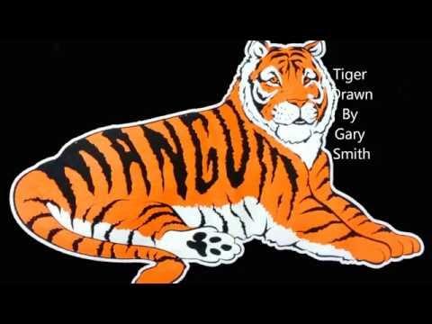 1966 Tigers 1 HD