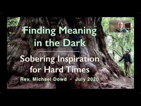 Finding Meaning In The Dark - Dowd (2020)