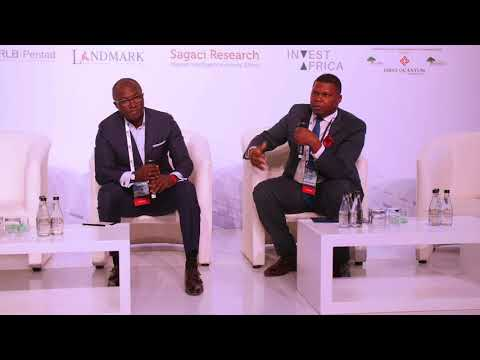 API 2017: CAMEROON: AFRICA'S NEW HOTSPOT?