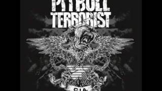 Watch Pitbull Terrorist No Resurrection video