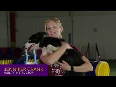 Agility 101 with Top Agility Handler Jennifer Crank