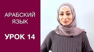 Арабский язык. Урок 14: Чтение