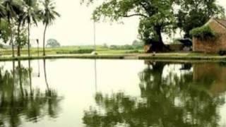 CHÚA XUÂN nhạc Tống Phước Nhơn (Tâm Không)Xuân Trường