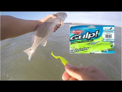 Redfish On Soft Plastics