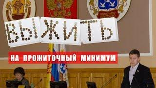 Депутат живет на прожиточный минимум - 8695 рублей, 2015