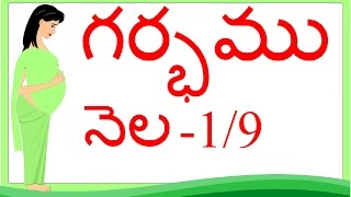Pregnancy | Telugu | Month 1 |  గర్భం నెల 1