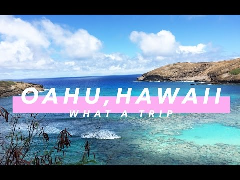 WHAT A TRIP //  Oahu, Hawaii