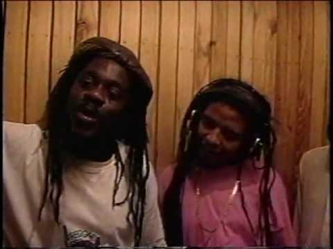 Reggae's Rise featuring Maxi Priest , Beres Hammon...