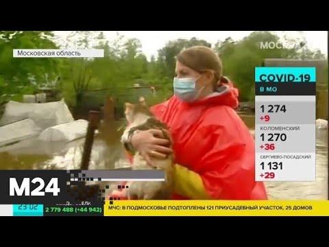 Жители Подмосковья спасают свое имущество от потопа - Москва 24