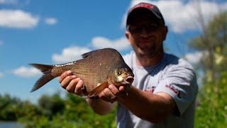 Рыбалка 2020.  Ловля леща на реке.  Или как избавиться от уклейки.