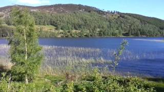 FANTASTIC Loch Cottage, Loch Pityoulish  Scotland & Sun ....perfect !...