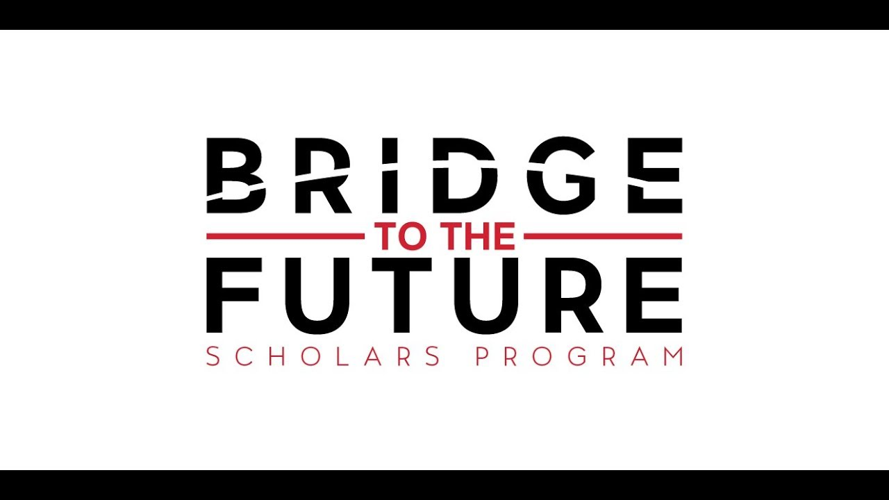 """Image result for bridge to the future"""""""