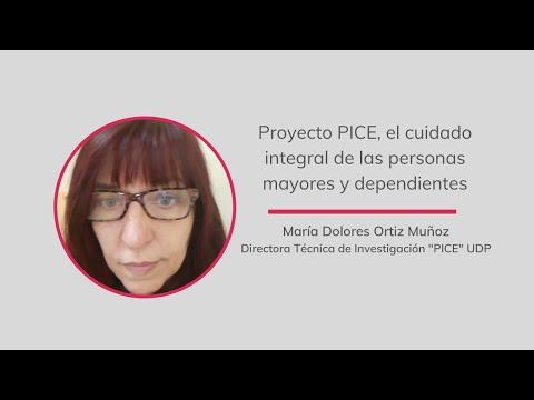 Proyecto PICE, el cuidado integral de las personas mayores y dependientes