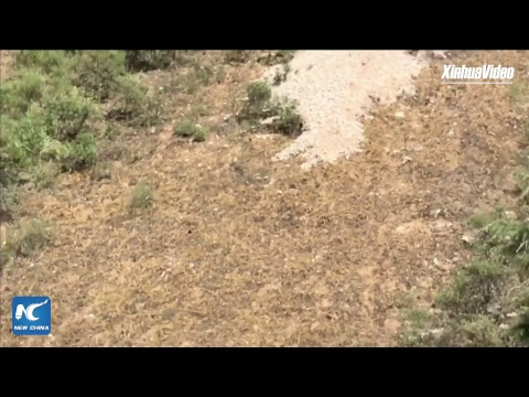 Jiuzhaigou earthquake 71 seconds early warning! How they made it?
