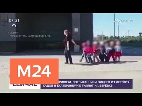 Воспитанники одного из детских садов в Екатеринбурге гуляют на веревке - Москва 24