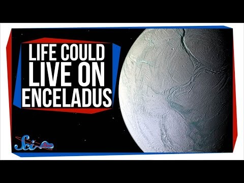 It's Official: Life Could Survive on Enceladus