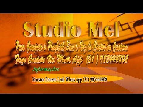 Free Download C0318  - Swing All The Colors  (versão Em Português) - Daniela Mercury Mp3 dan Mp4