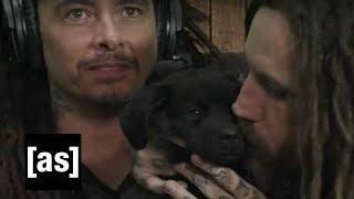 Korn Helps Dogs Find Forever Homes | Williams Street Swap Shop | adult swim