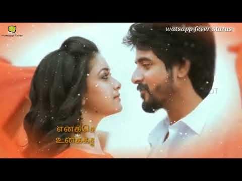 Enakena Yarum illaye  Aakko Aniruth Ravichander Tamil album WhatsApp status video