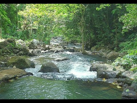 4 Hours Relaxing Brook Sounds, Running Water Streams, Waterfalls, Relaxation, Meditation Nature