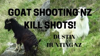 GOAT SHOOTING NZ 2019