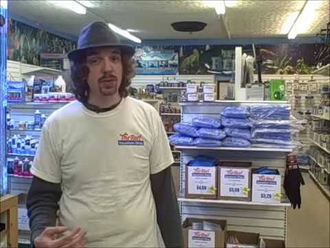 Welcome to the reef youtube for Aquarium shop