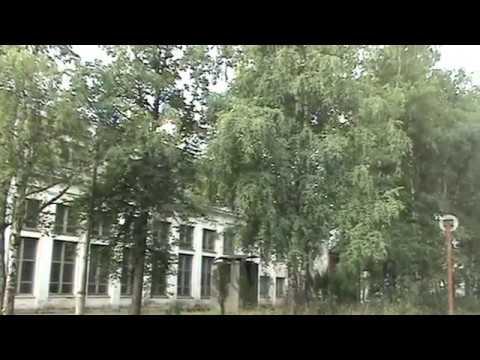 пос. Лесной. Верхнекамского р-она. Кировской обл. 2008год