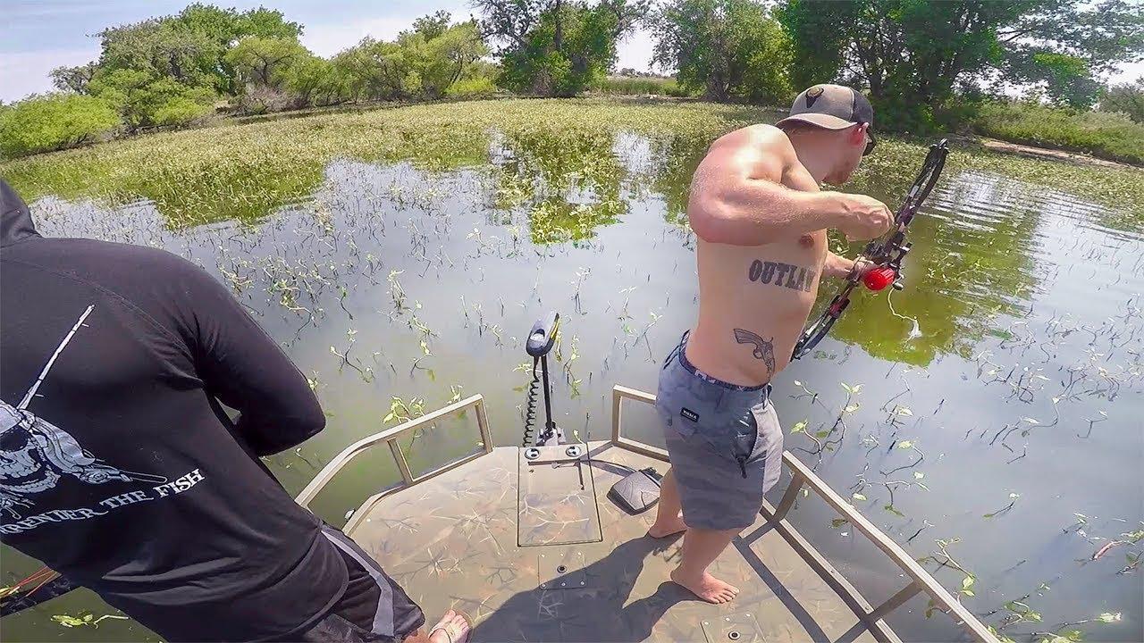 bowfishing-carp-in-a-clear-lake