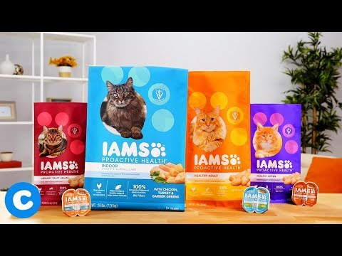 Iams Cat Food | Chewy