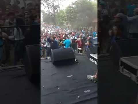Minionska- daun ilusi (live)