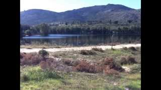 Fruit irrigation farm for sale around Malmesbury Western Cape South Africa | AGF0056
