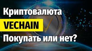 Криптовалюта Vechain - Подробный обзор, Перспективы и прогноз (VET)