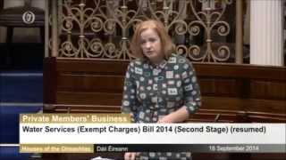 TD tells Dáil