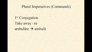 Imperatives (Commands)