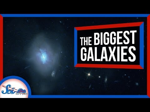 Where Do the Biggest Galaxies Come From?
