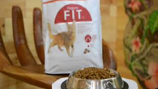 Royal Canin Fit   32 для домашних котов 1кг на вес 2