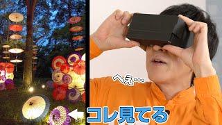 【VR体験】旅先でオンライン散歩してみた。【月あかり花回廊】