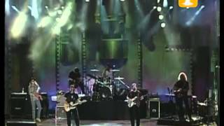 Creedence Clearwater Revisited, Cotton Fields, Festival de Viña 1999