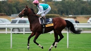 Frankel - The 'Wonder Horse' [All 14 Wins]