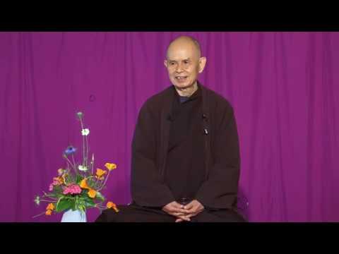 Compasión con los animales.  Thich Nhat Hanh