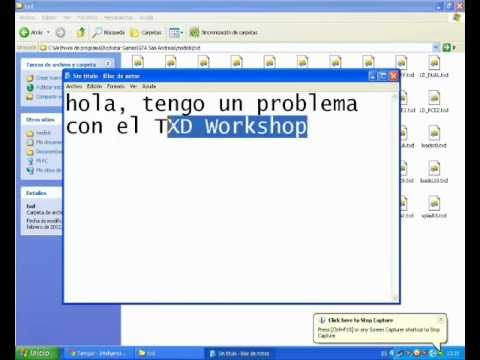 el txd workshop