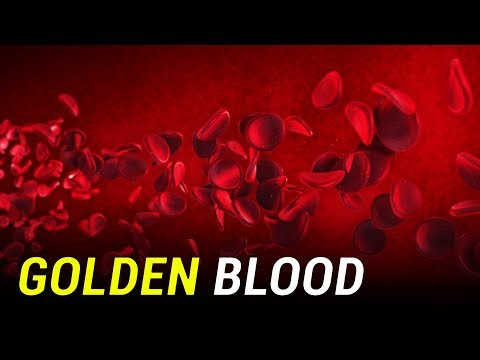 Golden Blood - The World's Rarest and Most Precious Blood Type