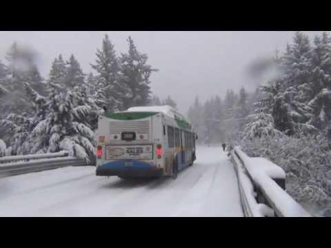 Seattle Tacoma WA Snow storm January 2012