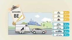 les types de permis deux et quatre roues (A1 - A2 - A - B1 - B - B96 - BE)