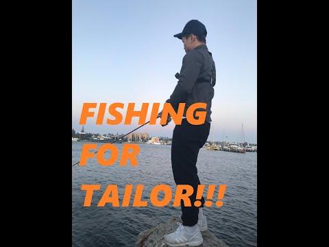 Part 2: Fremantle Harbour, Fishing For Tailor